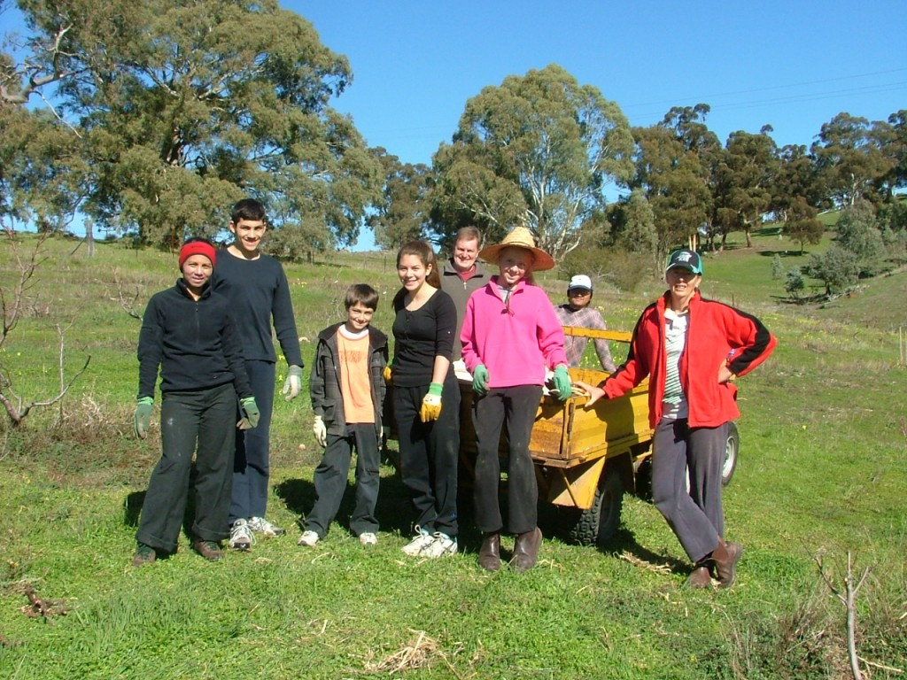 Tree planting with B&B guests